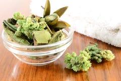 Groen welriekend mengsel van gedroogde bloemen en kruiden Royalty-vrije Stock Afbeeldingen