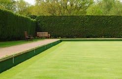 Groen werpen Royalty-vrije Stock Foto