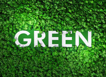 Groen woord onder het gras Stock Foto