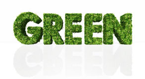 Groen woordhoogtepunt van gras en bloemen Royalty-vrije Stock Fotografie