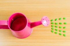Groen zaad met roze tuingieter stock fotografie