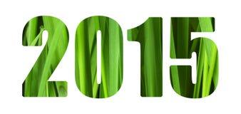 Groene 2015 stock afbeelding