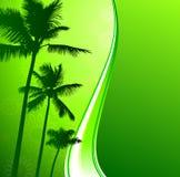 Groene aardachtergrond met palmen Stock Foto's