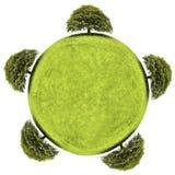 Groene aarde en boom die op witte achtergrond wordt geïsoleerdt Royalty-vrije Stock Afbeeldingen