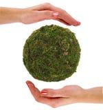 Groene Aarde in handen Stock Afbeelding