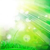 Groene abstracte aard stock illustratie