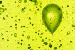 Groene abstracte achtergrond Stock Fotografie