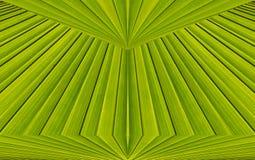 Groene abstracte achtergrond van bladpatroon Stock Foto's