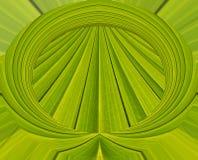 Groene abstracte achtergrond van bladpatroon Royalty-vrije Stock Fotografie