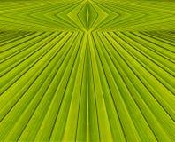 Groene abstracte achtergrond van bladpatroon Royalty-vrije Stock Afbeelding