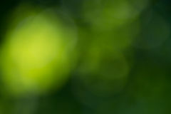 Groene abstracte bokehachtergrond Royalty-vrije Stock Foto