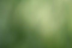 Groene abstracte bokehachtergrond Royalty-vrije Stock Afbeeldingen