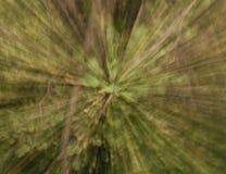 groene abstracte opzettelijk onscherpe achtergrond Stock Fotografie