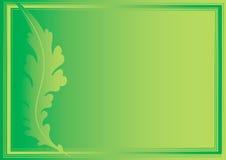 Groene achtergrond Royalty-vrije Stock Foto