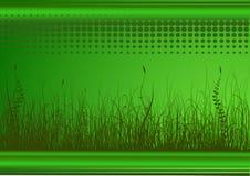 Groene achtergrond met gras Royalty-vrije Stock Foto