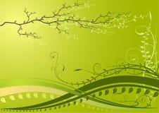 Groene achtergrond met tak royalty-vrije illustratie