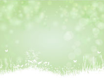 Groene achtergrond met vlinder en installaties Stock Foto's