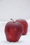 Groene & rode appel Stock Foto