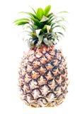 Groene ananas Royalty-vrije Stock Fotografie