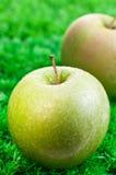 Groene appel dichte omhooggaand met appel bij achtergrond Royalty-vrije Stock Afbeelding