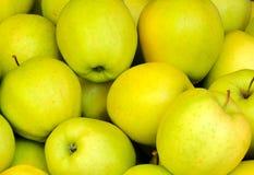 Groene appelen Royalty-vrije Stock Afbeeldingen