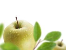 Groene appelen Stock Afbeelding