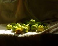 Groene appelen en een gele peer Stock Foto