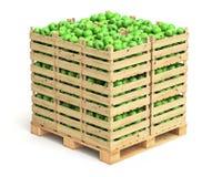 Groene appelen in houten kratten Stock Foto