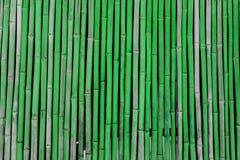 groene bamboeachtergrond Royalty-vrije Stock Fotografie