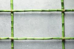 Groene bamboestammen en ruimte voor tekst op grijze achtergrond stock foto's