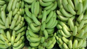 Groene bananen in een fruitmarkt stock foto