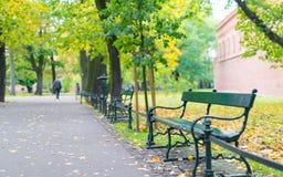 Groene banken in het park tegen de achtergrond van bomen Royalty-vrije Stock Afbeeldingen