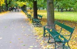 Groene banken in het park tegen de achtergrond van bomen Royalty-vrije Stock Fotografie