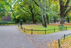 Groene banken in het park tegen de achtergrond van bomen Stock Afbeeldingen