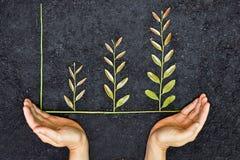 Groene bedrijfsgrafiek Stock Foto's
