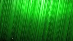 Groene bel die voor grasmuur toenemen stock videobeelden