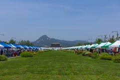 Groene berg royalty-vrije stock afbeeldingen