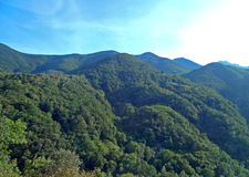 groene bergen in Centovalli, Tessin, Italië Stock Foto