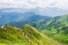 Groene bergen van de Oekraïne, de Karpaten Royalty-vrije Stock Foto