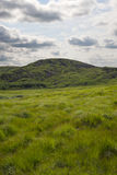 Groene bergmening Stock Afbeeldingen