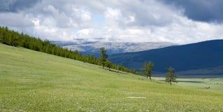 Groene bergsteppen van Khövsgöl aimag royalty-vrije stock foto's