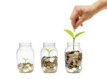 Groene Besparing stock fotografie