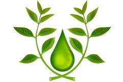 Groene blad en waterdalingen stock illustratie