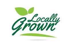 groene blad plaatselijk Gegroeid hand geschreven woordtekst voor het ontwerp van het typografieembleem vector illustratie