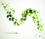 Groene bladeren royalty-vrije illustratie