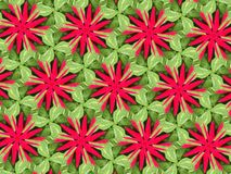 Groene bladeren en roze bloem Royalty-vrije Stock Afbeelding