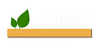 Groene bladeren met hout Stock Fotografie