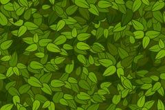 Groene bladeren naadloze textuur Stock Fotografie