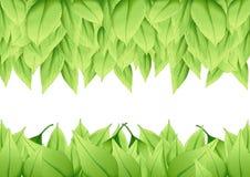 Groene bladeren natuurlijke verf en Verse bladerenvlotter in de lucht vector illustratie