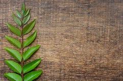 Groene bladeren op de houten textuur als achtergrond Stock Fotografie